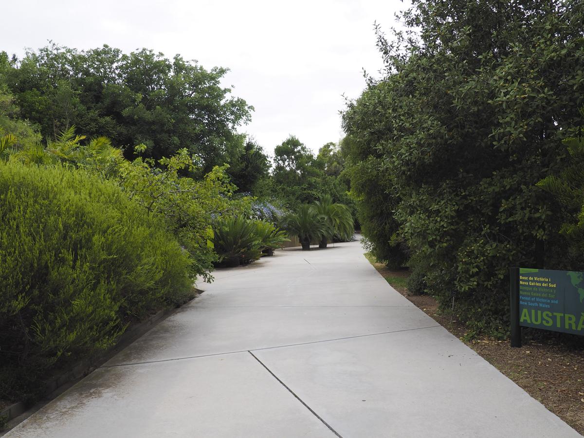 Cemento en el área de Australia - Jardín Botánico de Barcelona