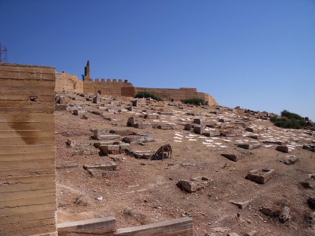 Tumbas meriníes de Fez: pasto para los burros