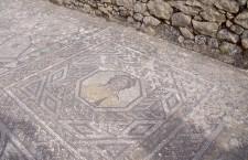 Mosaico de Volúbilis