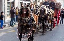Caballos tirando del carruaje - Els Tres Tombs de Sant Antoni